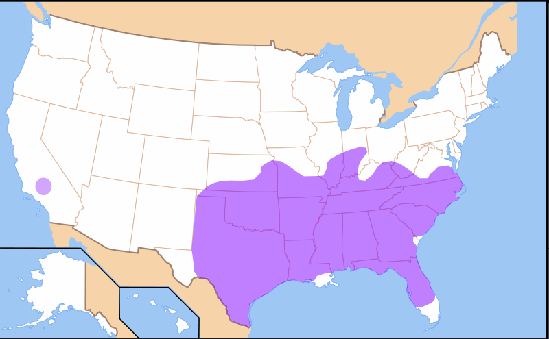 Northern californian english hella different languages of the world differences between northern and southern california are not purely lexical as some involve pronunciation of certain sounds especially vowels gumiabroncs Images
