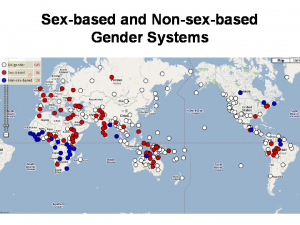 sex based gender systems