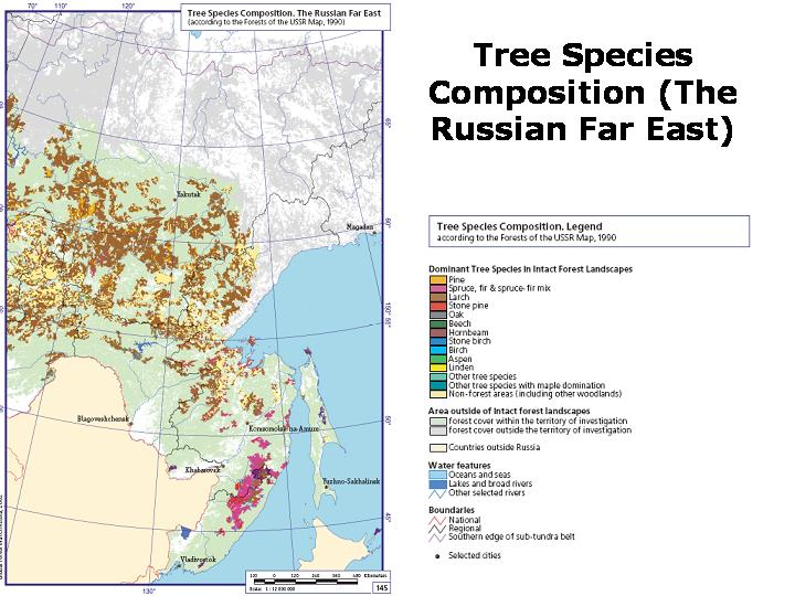 Worksheet. Environmental Concerns over Logging and Timber Processing in the