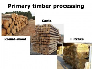 Primary_timber_processing