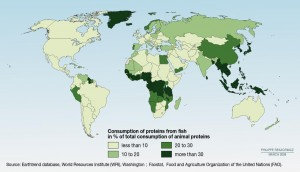 fish-protein-world-consumption